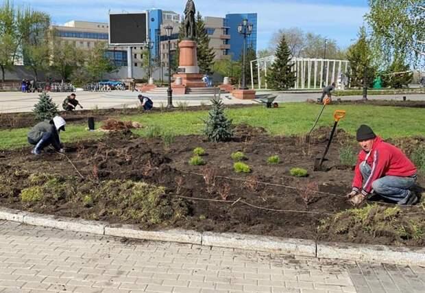В Красноярске начали озеленять парки и скверы
