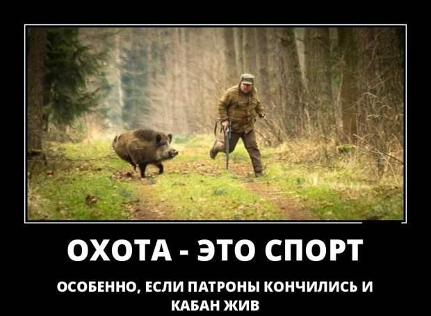 Прикольные картинки про охотников с надписью (40 фото ...