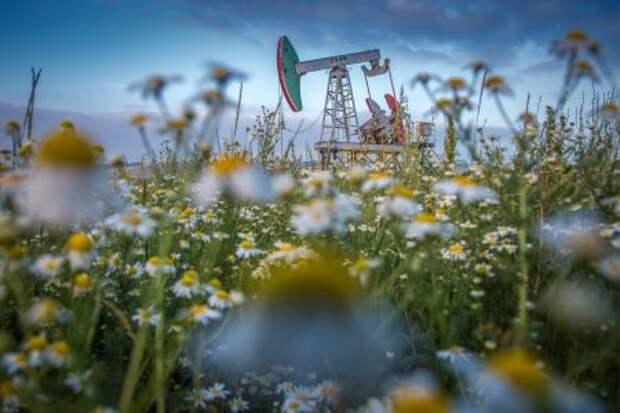 Курс на взлет - что будет с ценами на нефть летом?