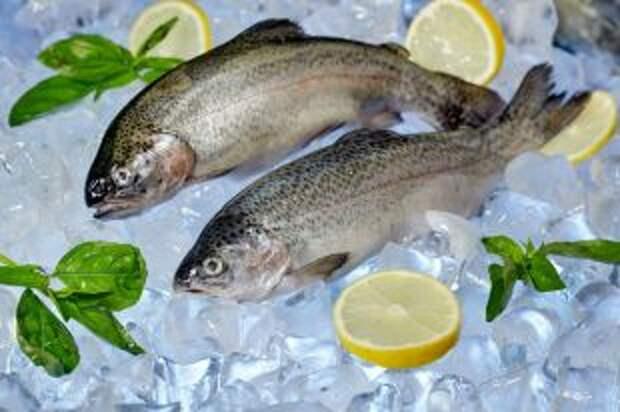 Залить лимоном, не посмотреть в глаза. 10 ошибок при приготовлении рыбы