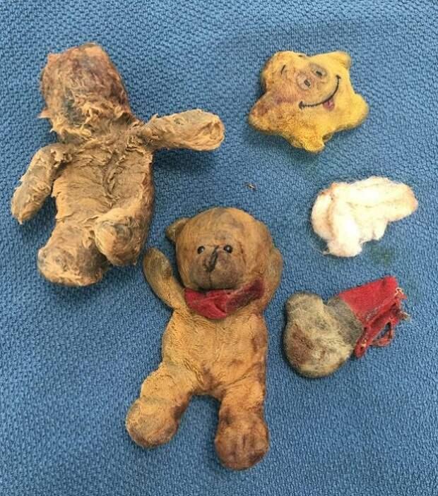 Собака заболела! Врачи думали, что у нее рак желудка, а оказалось — медведи в животе!)