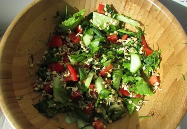 Зачем нужно проращивать гречку?