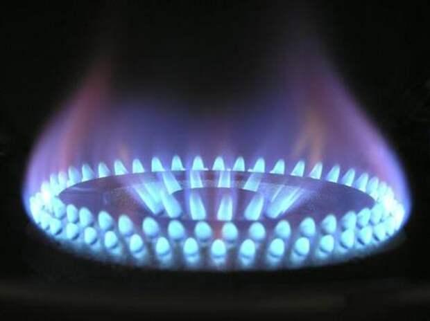 Директор ФЭР Пикин назвал заявление главы Минэнерго США о качестве газа из России «смешным»