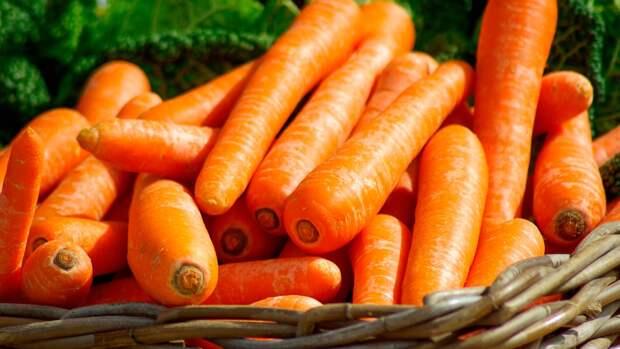 Офтальмолог Куренков оценил способность моркови восстанавливать зрение