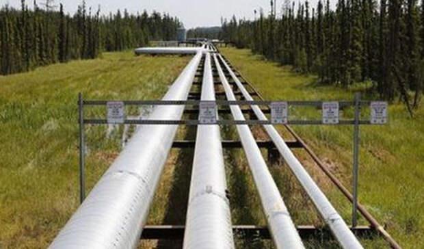 Более чем вдвое сократился экспорт нефти изРФвавгусте 2020