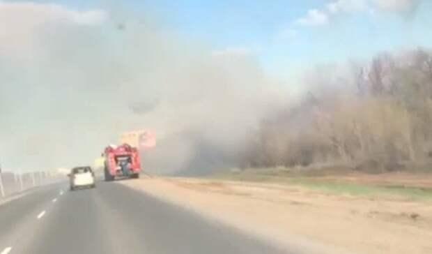 Крупный пожар врайоне поселка Экодолье уничтожил часть придорожной лесополосы
