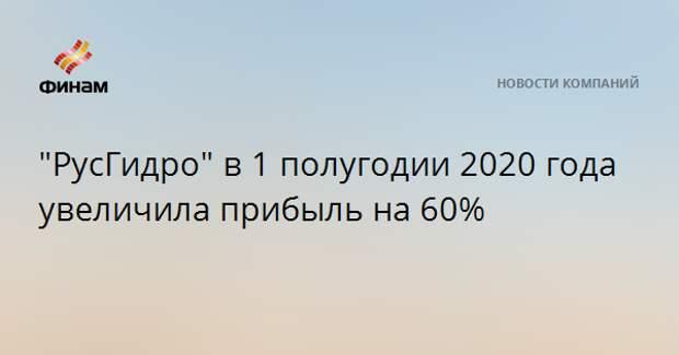 """""""РусГидро"""" в 1 полугодии 2020 года увеличила прибыль на 60%"""