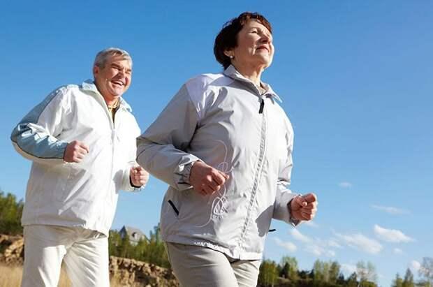 Холестерин — друг или враг?