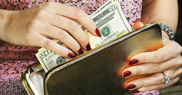 Какой кошелек притягивает деньги