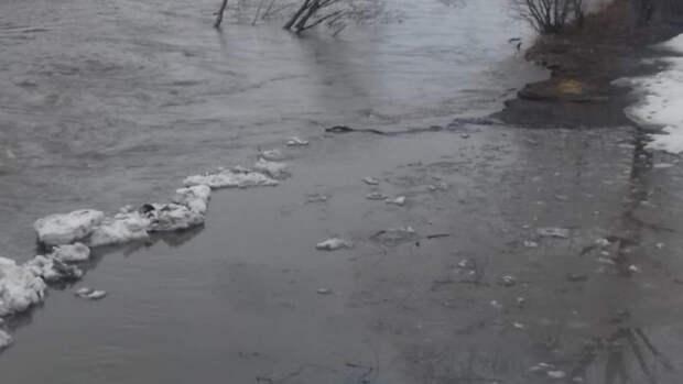 Еще одну трассу в Алтайском крае перекрыли для движения из-за паводка