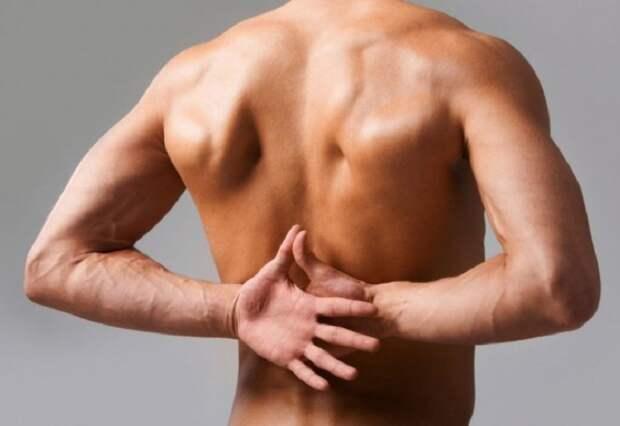 укрепление позвоночника упражнениями