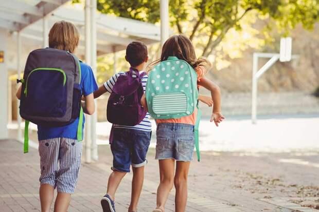 Идеальный рюкзак для ученика младших классов: 5 критериев выбора