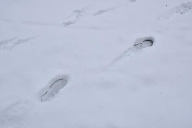 В Краснодаре 35 управляющих организаций оштрафуют за снег во дворах