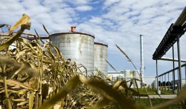 REG увеличивает мощность комплекса попроизводству биодизеля