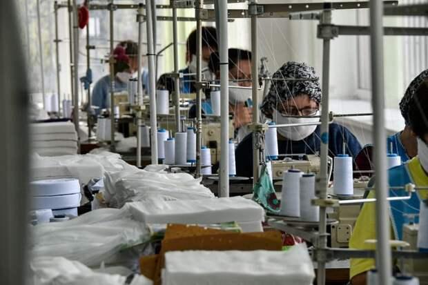 Кубанским предприятиям выдали льготные займы на 1,5 миллиардов рублей