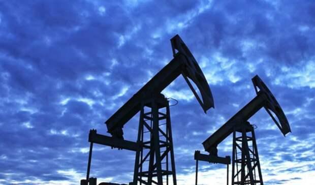 «Головокружительным» назвал падение мирового спроса нанефть президент конференции ОПЕК