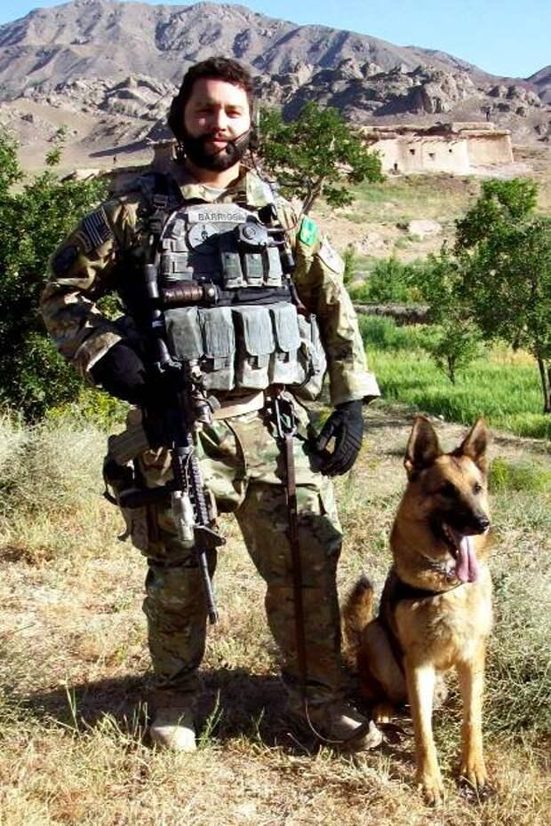 Собачья жизнь в американской армии