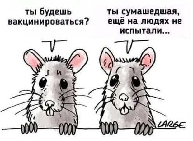 Депутат ГосДумы врать не будет