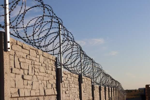 Вырубку в центре Севастополя компенсируют забором с полицейской колючкой