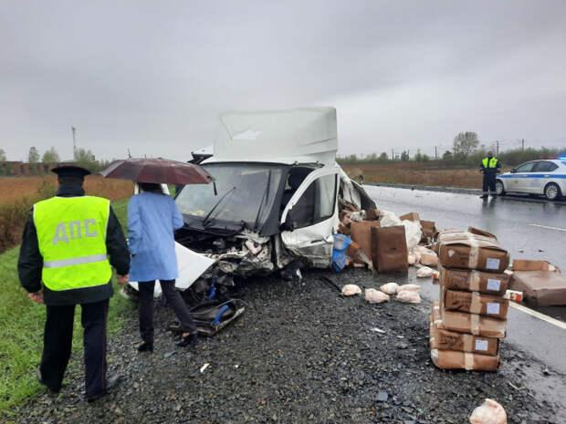 Пять человек погибли в ДТП с «Газелью» в Красноярском крае