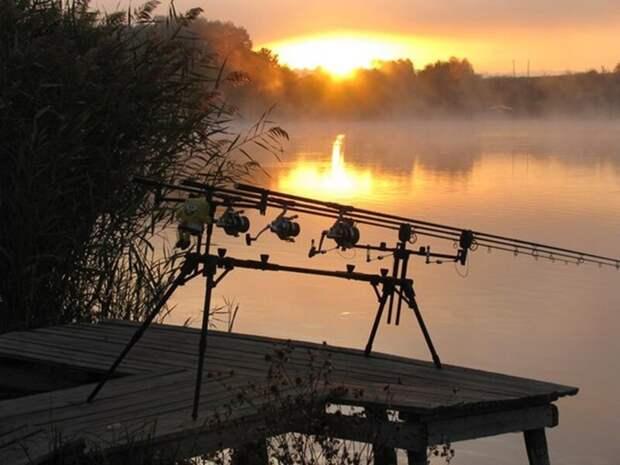 На зорьке... лето, природа, рыбалка, хобби