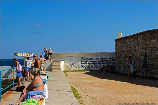 Блогер посетил один из севастопольских пляжей, и вот что он там увидел... (фоторепортаж)