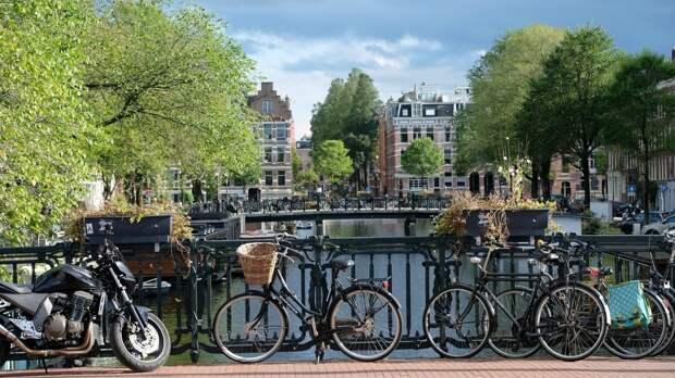 Нидерландский госсекретарь по экономике покинула должность после критики COVID-пропусков