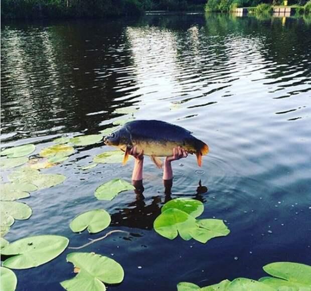 Подарок от водяного  лето, природа, рыбалка, хобби