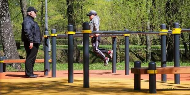 В 40 парках Москвы созданы условия для занятий воркаутом