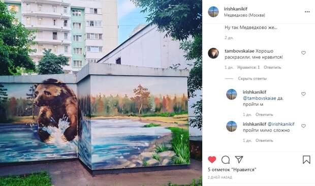 Фото дня: современное искусство в проезде Шокальского