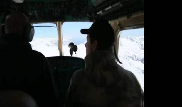МЧС Абхазии ищет в горахтуристическую группу из шести россиян