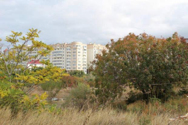 Жители Севастополя поддержали создание памятника природы регионального значения