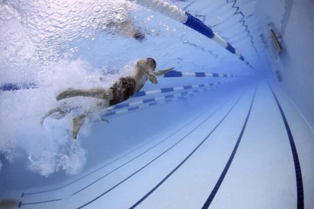 Семья из Алтуфьева заняла третье место в окружных соревнованиях по плаванию