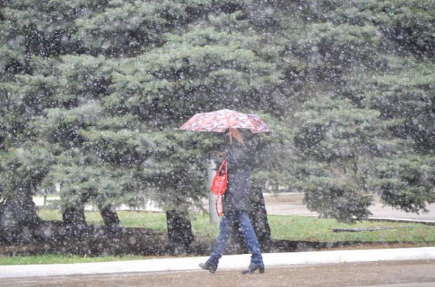 Дожди и мокрый снег прогнозируют на Кубани