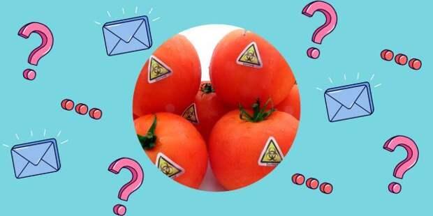 Продукты с пометкой ГМО опасны для здоровья — правда или миф?