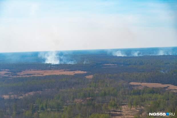 Омичам ещё три недели нельзя будет ходить в лес из-за пожаров