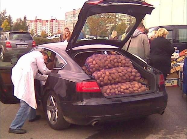 Захотел продать картошку? Заплати в бюджет немножко