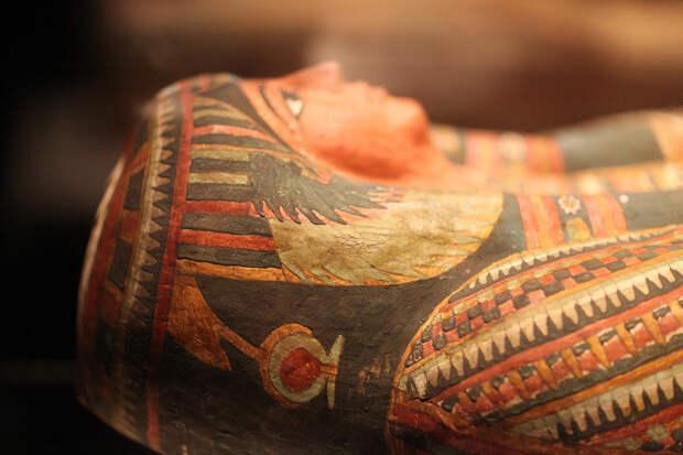 В Египте нашли 13 древних саркофагов