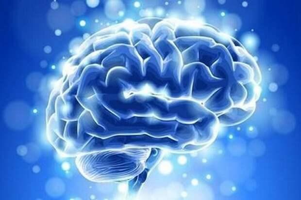 Человеческий мозг – хранилище банка данных Вселенной