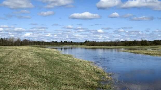 Главный синоптик России предрек тяжелый паводок в Алтайском крае