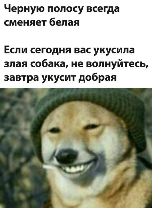 Подборка прикольных фото №2683 (30 фото)