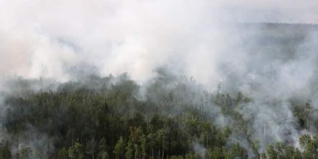 В МЧС прокомментировали ситуацию с пожарами в Башкирии