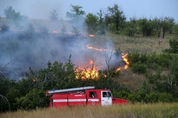 В России за 24 часа потушили 96 лесных пожаров