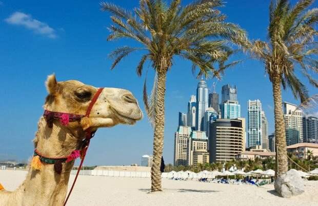 Сплошное разочарование: названы города, не оправдавшие ожиданий туристов