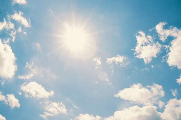 Что можно сажать раньше из-за ранней и теплой весны, а что нет?