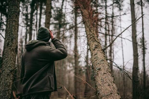 Дневник охотника. Когда у тараканов гон