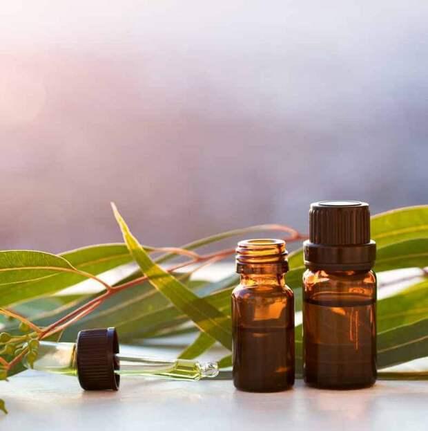 Ароматерапия вместо таблеток: как лечиться эфирными маслами