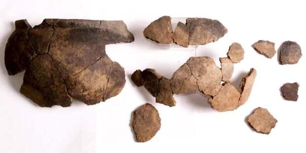 За 10 лет археологи Москвы обнаружили почти 60 тыс ценных артефактов – Собянин. Фото: Пресс-служба Департамента культурного наследия города Москвы