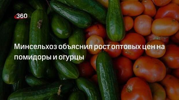 Минсельхоз объяснил рост оптовых цен на помидоры и огурцы