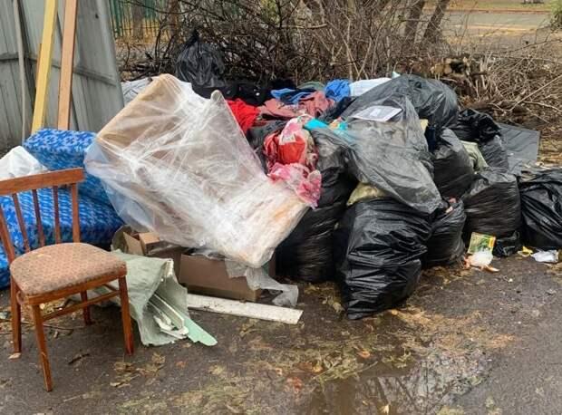 «Прошу принять меры!»: депутат облдумы Владимир Резников жалуется на плохой вывоз мусора